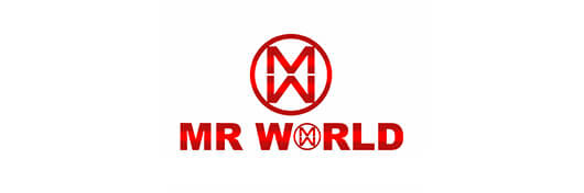 Mr-World_logo
